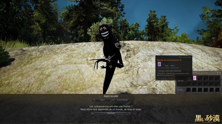 Black Desert Online 380 point dénergie atteind 1