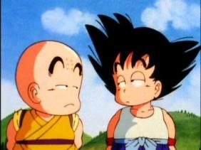 Dragon Ball Sangoku Et Krillin