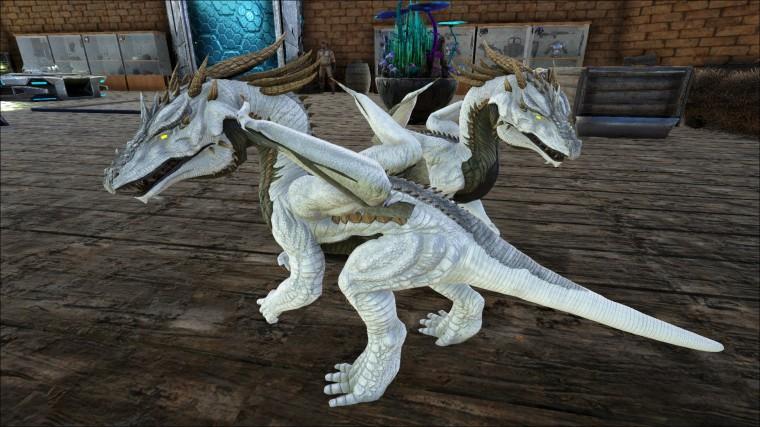 ARK dragon jumelles 1
