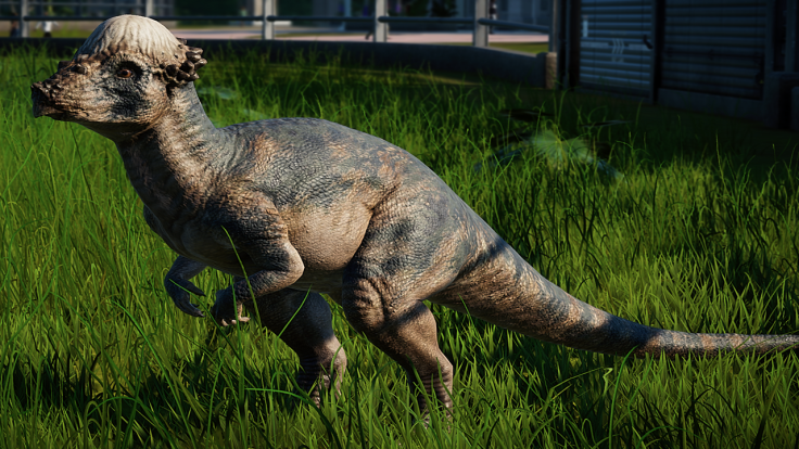 jurassic world evolution Pachycephalosaurus