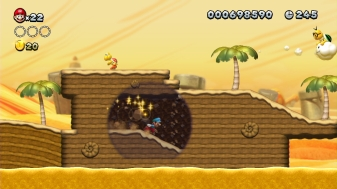 New Super Mario Bros. Wii (1)