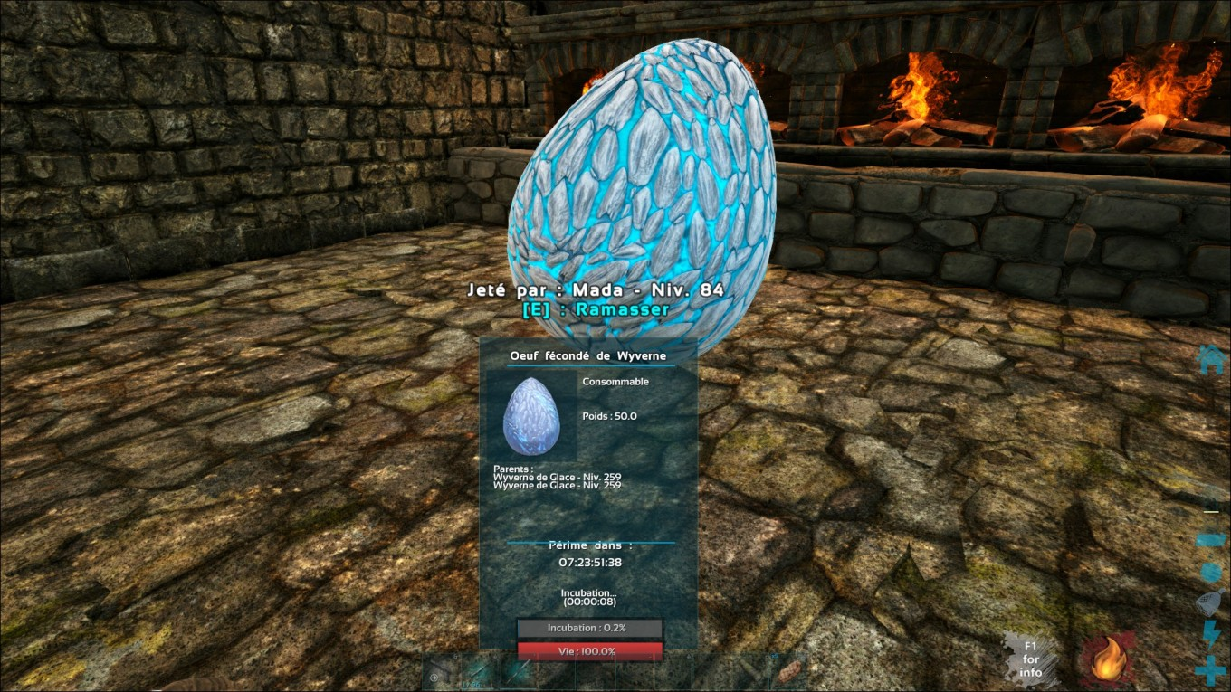 Ark Survival Evolved Oeuf De Wyverne De Glace