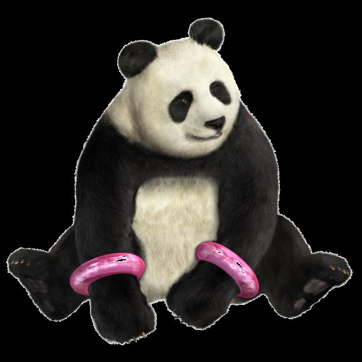 Tekken 4 - Panda - PNG - Render