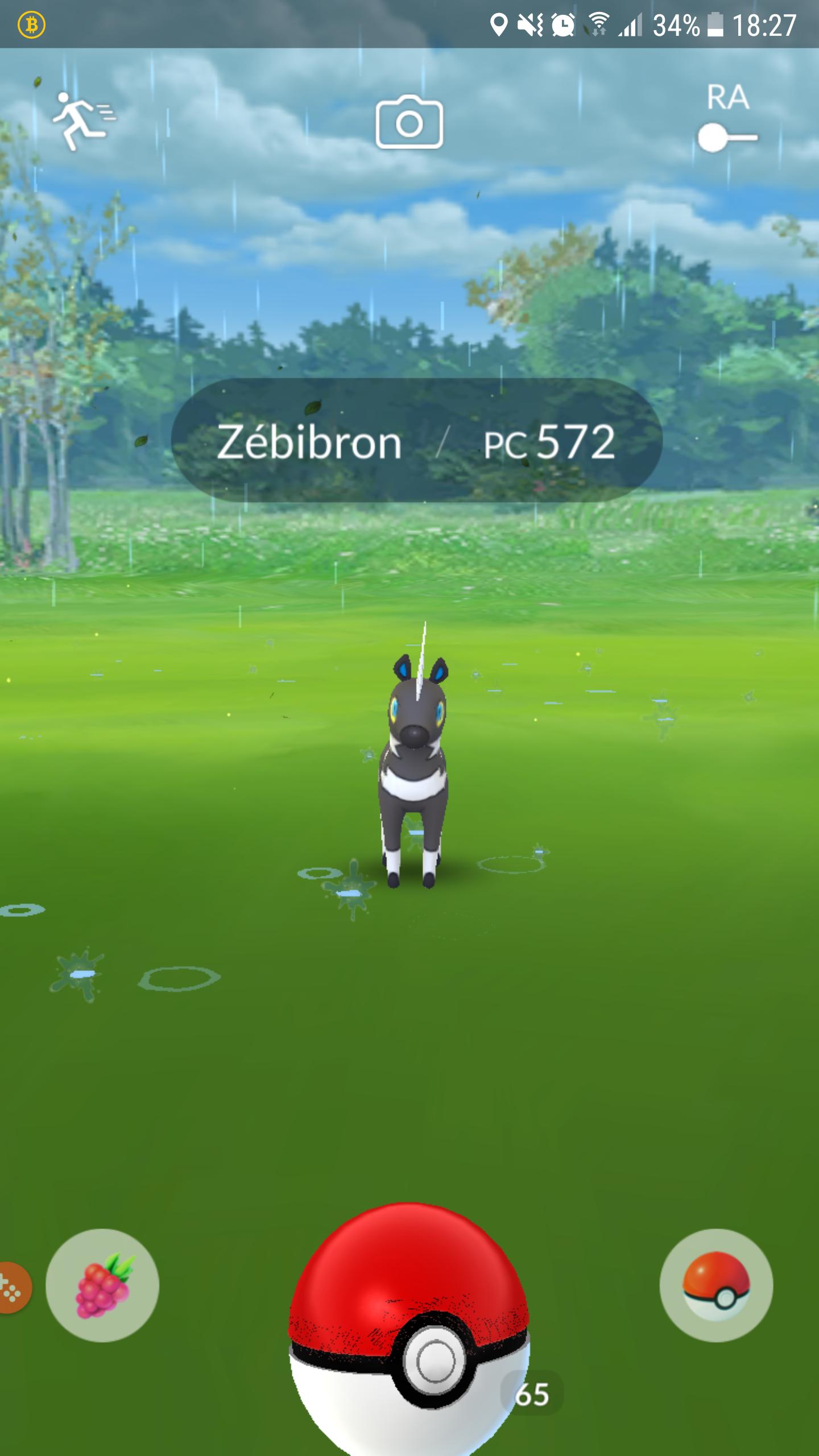 Pokémon Go - Zébibron - Pc 572